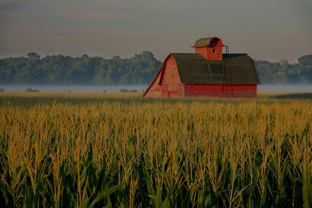 farm and crop insurance in Danville STATE | Rightmyer Insurance Agency